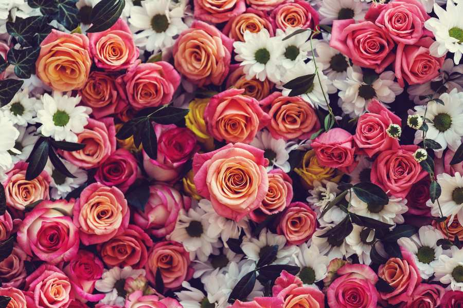 servizio vendita fiori online